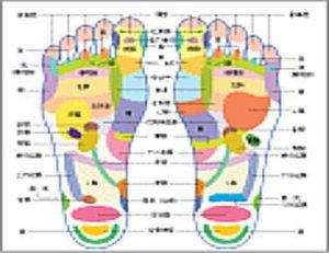 足裏反射区療法